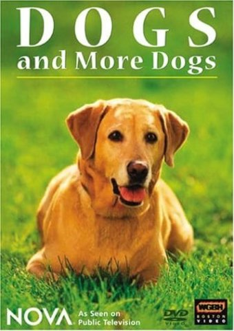 Dogs - Dogs and more Dogs