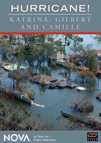 Hurricane!: Katrina, Gilbert, And Camille (2-DVD)