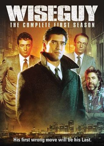 Wiseguy - Complete 1st Season (4-DVD)