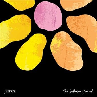 The Gathering Sound [Box Set] (3-CD + DVD + LP +