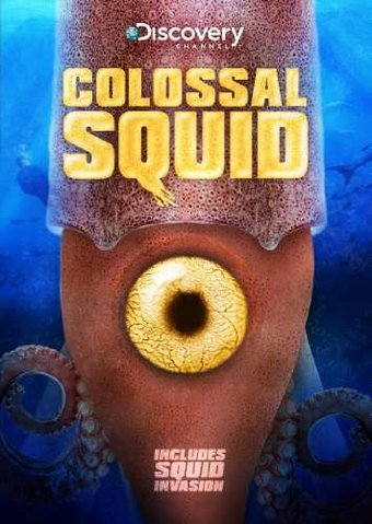 Discovery Channel - Colossal Squid