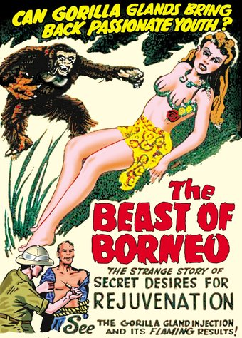 The Beast of Borneo