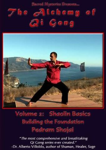 The Alchemy of Qi Gong, Volume 2: Shaolin Basics