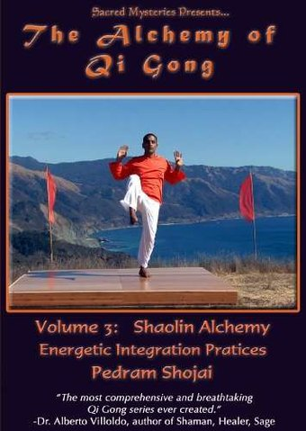 The Alchemy of Qi Gong, Volume 3: Shaolin Alchemy
