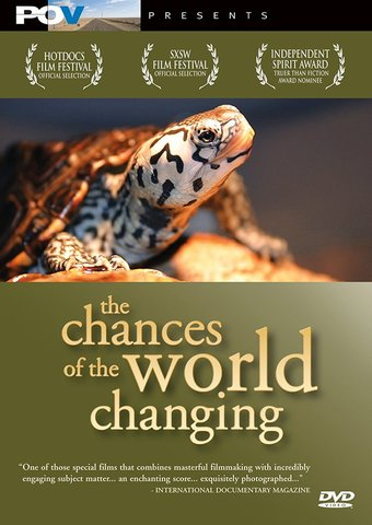 The Chances of the World Changing