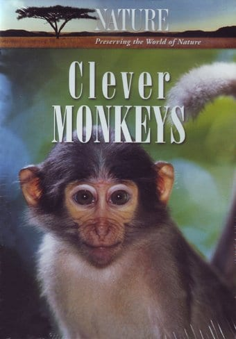 Nature - Clever Monkeys