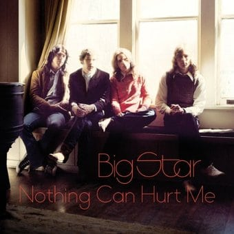 Nothing Can Hurt Me (2-LPs)