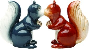 Squirrels - Salt & Pepper Shakers