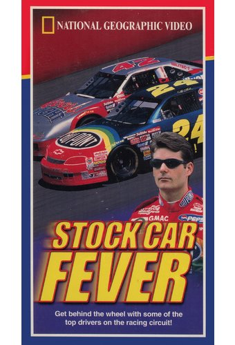 Stock Car Fever
