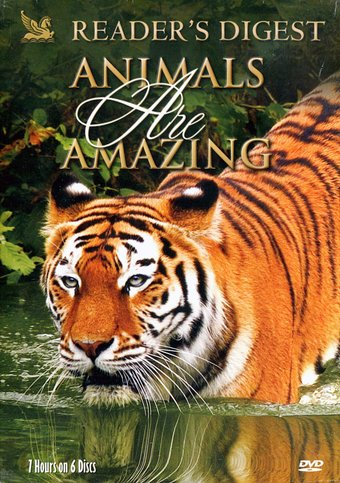 Reader's Digest: Animals are Amazing (6-DVD)