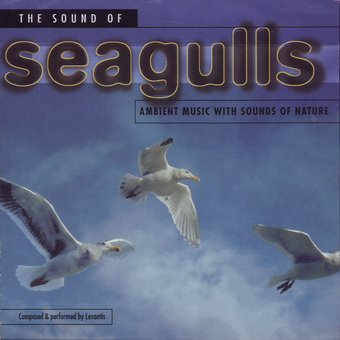 The Sound Of Seagulls