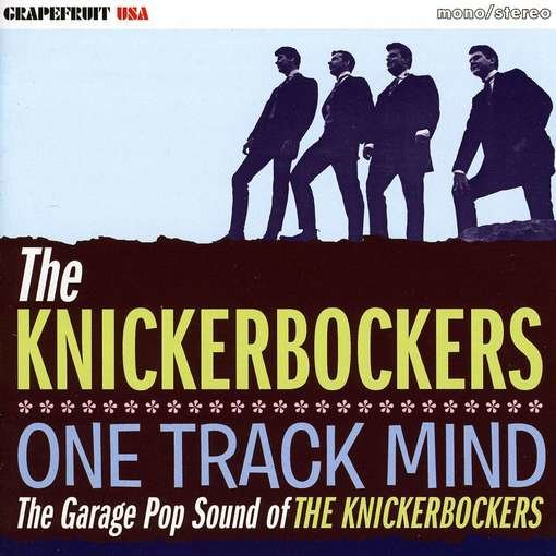 One Track Mind: The Garage Pop Sound of the