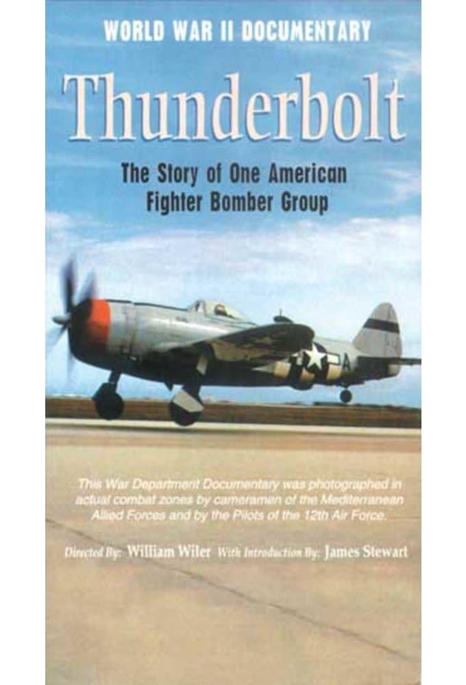 Thunderbolt: The Story of One American Fighter