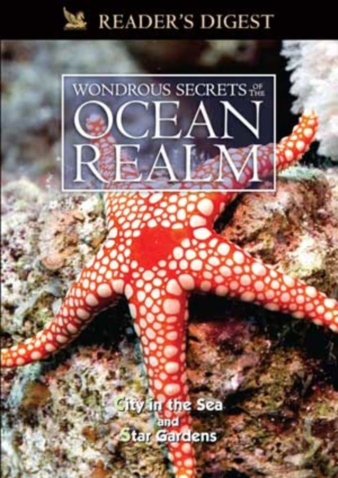 Wondrous Secrets of the Ocean Realm: City in the
