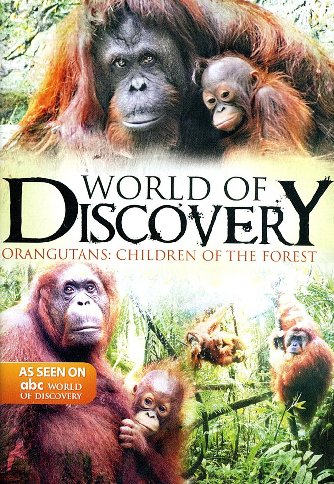 ABC World of Discovery: Orangutans - Children of