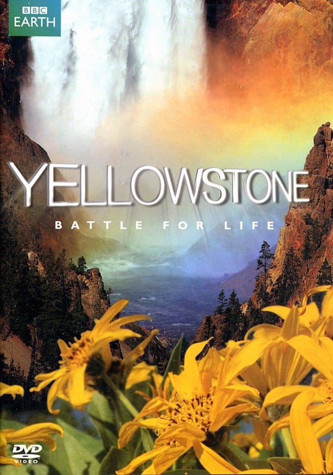BBC - Yellowstone: Battle for Life